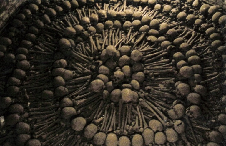 lima_bones