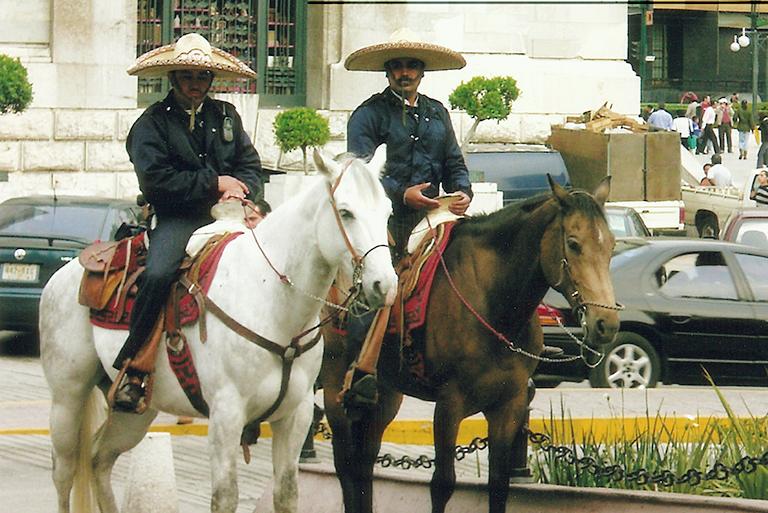 mexico_horses
